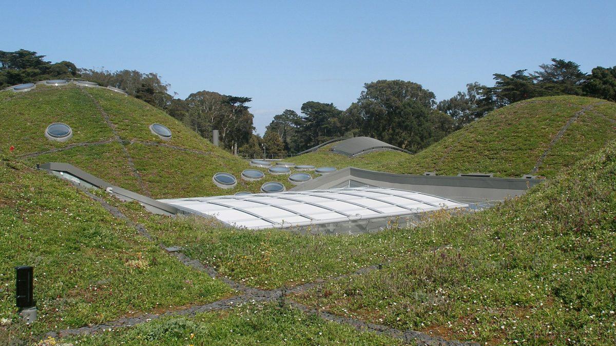 Logical Green Institute